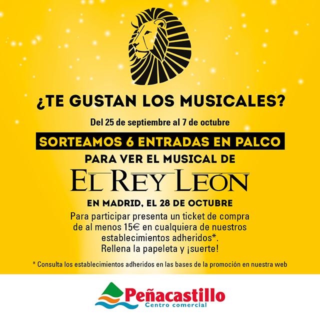 Desde el próximo lunes hasta el día de Octubre tendréis la posibilidad de conseguir 6 entradas en palco para ver el musical El Rey León, el musical.